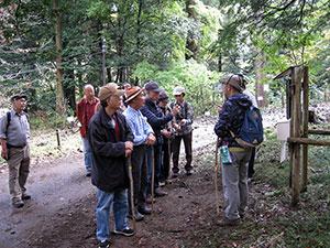 技術研修「森の案内人と歩くガイドツアー」の実施