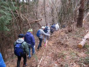 茨城分収造林視察の実施